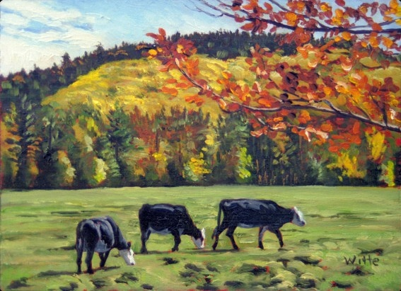 Three cows, on an autumn day, somewhere in New England (Vermont or New Hampshire).