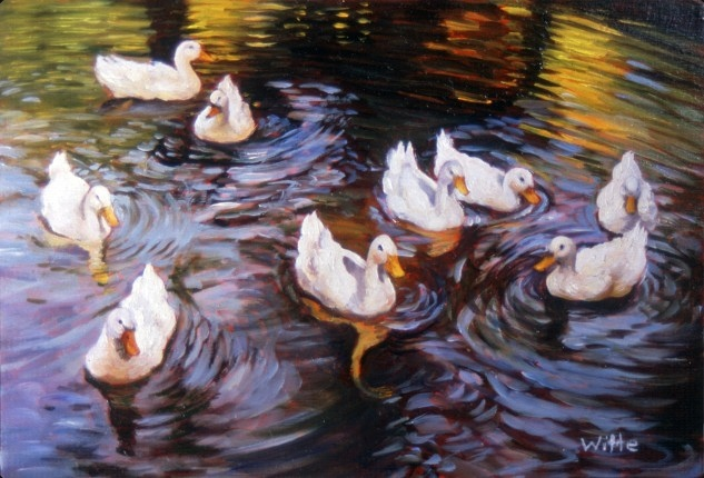 White ducks converge on a lake of autumn reflections.