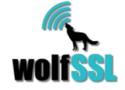 Wolf SSL -- The TLS v1.3 Advantage