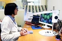 Digital microscope seed coating visual inspection