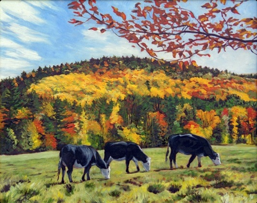 Three cows, grazing on an autumn day, somewhere in New England (Vermont or New Hampshire).